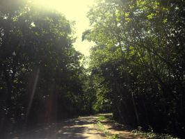 green road by Arderok