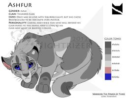 Ashfur Character Sheet by Nightrizer