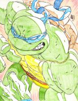 Leonardo TMNT sketch by jonathan-rector