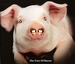 The Face Of Bacon by Jenn-Coney1976