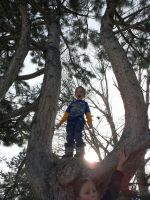 Boy In Tree by PamplemousseCeil