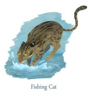 F for Fishing Cat by Aimebebe