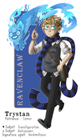HP House Sorting Meme - Ravenclaw's Static Wind by ZeTrystan