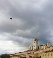 Flight Over Assisi by ShipperTrish