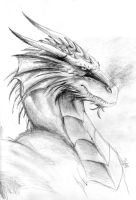The Red Dragon by ThunderboltFire