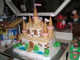 Castle Cake by HeatherBear555