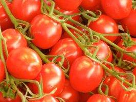 Tomatoes Close Up by porpierita