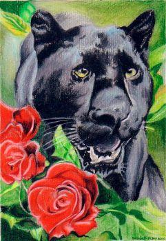 Black Panther and roses by queenlin