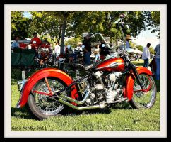 Goin' Ape Knucklehead by StallionDesigns