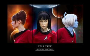 Star Trek - Redshirt Triptych by chirinstock
