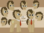 Doctor Whooves Ref by Fire-Girl872
