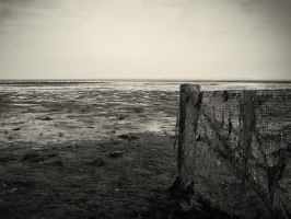 Ebb by mb-neo