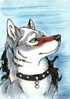 ACEO- AlphaKi by NightFell