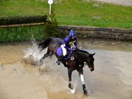 Chatsworth Sparks May Fly by celtes