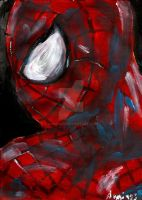 Amazing Spiderman 1 by vanouka