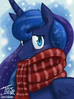 Snug and Cozy by TheDracoJayProduct
