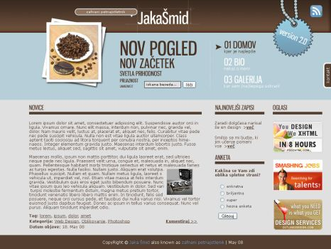 Web design  brown-blue by spaka