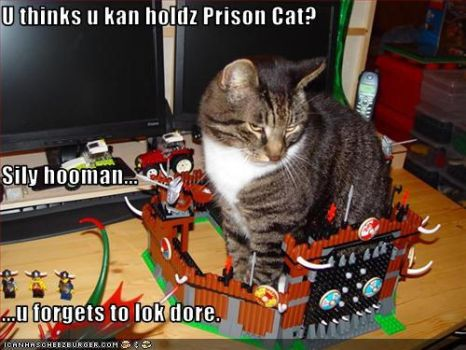 The Cunning Prison Cat by Shquiggles