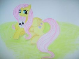 Fluttershy and Angel by jaime912