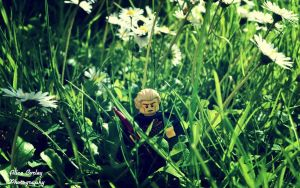 Lego Photography by alicecorley