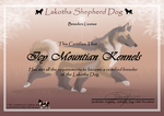 Lakotha dog by blueshinewolfstar1