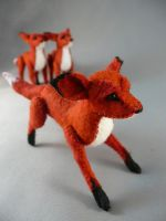 more foxes by Shalladdrin