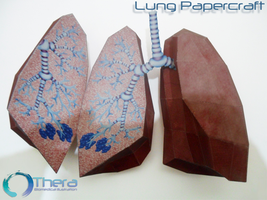 Lung Papercraft by Shinaig