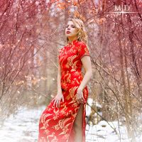Red Winter - IV by MD-Arts