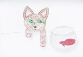 Kitten + Betta by creativlilthing