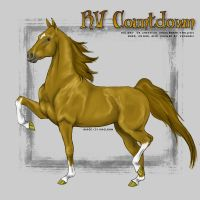 VHR- Chestnut Saddlebred by Kholran