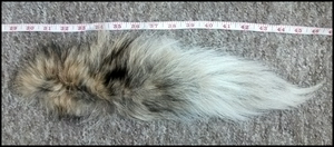 Coyote Tail #1 SOLD by EternalEmporium