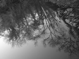 reflection 2 by kain-hallis