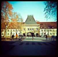 university by quadratiges