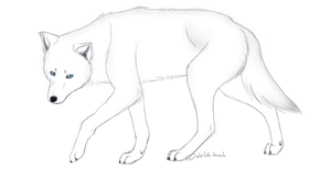 White Wolf by Shiloh-Tovah