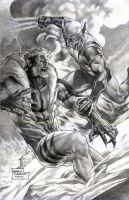 Wolverine Vs Sabertooth by wolfpact