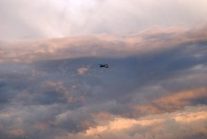 from sky to sky by montex