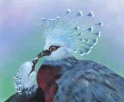 Victoria Crowned Pigeons by GersifGalsana