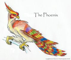 The Phoenix by Falcolf