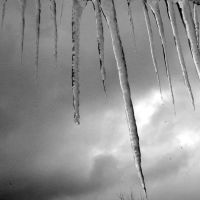 Icicles by flamingfish