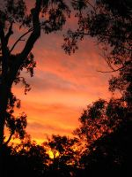 A Framed Sunset by eek-tegan-xx