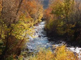 Rich Autumn River v. 1 by MountainDragonPhoto
