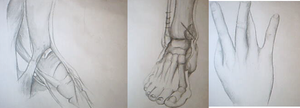 Feet structure + Hand sketches by MutatedCamel