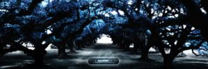 :: Forest of Light :: by drawerx