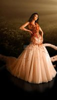 goldenbrown: haute couture'09 by leoalmodal