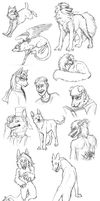 Sketch Gifts 2014! by Canis-ferox
