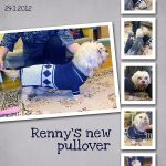 Renny's New Pullover by Eijaite