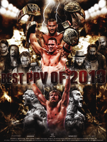 WWE Best PPV Of 2013 Poster by thetrans4med