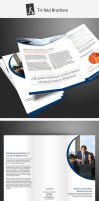 Tri-fold Brochure 1 by demorfoza