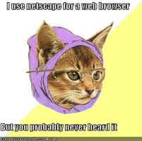 Hipster Kitty web browser by somxt
