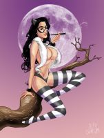 Crissy Henderson kitty vixen by scottssketches